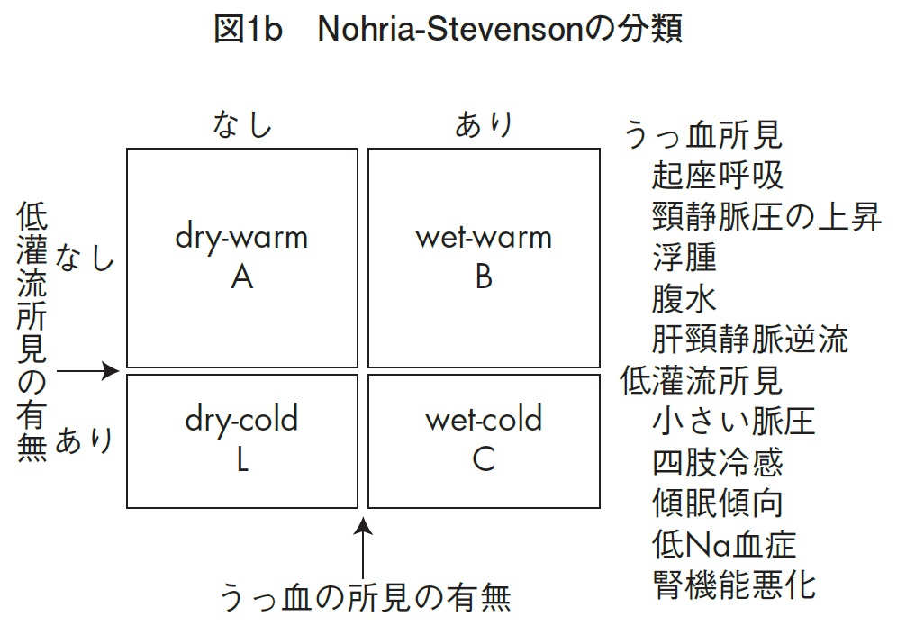 ノリア分類