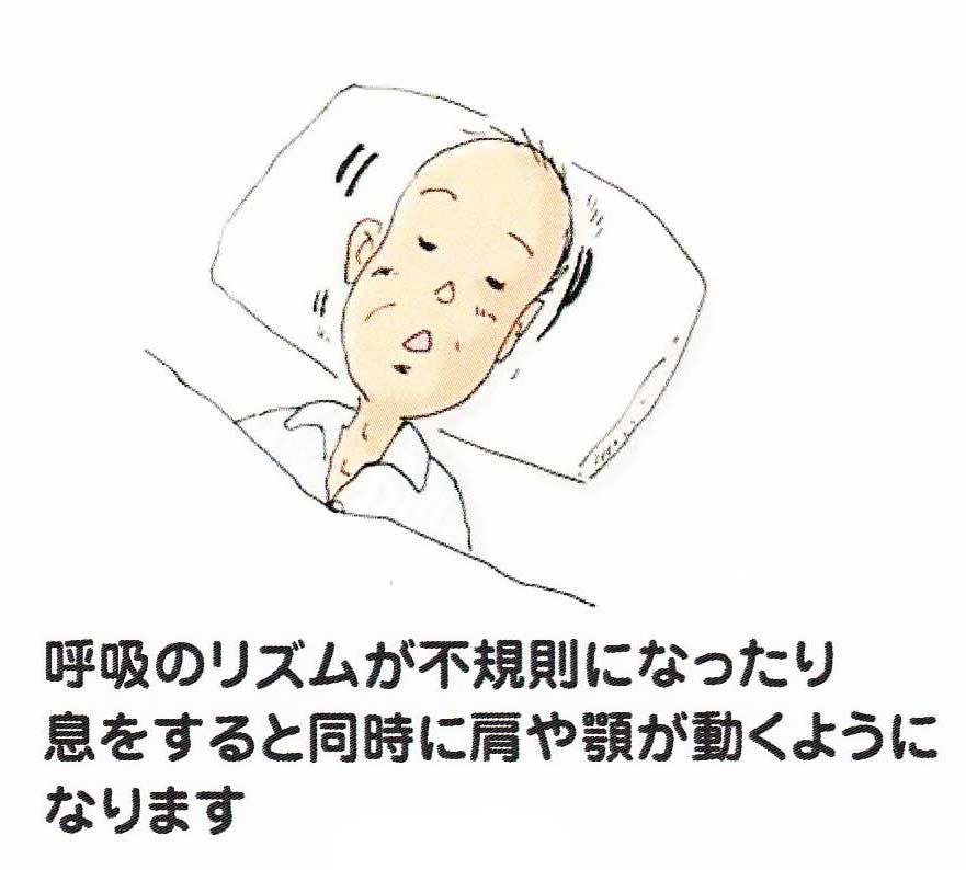 IMG_0001 のコピー 2_edited-1