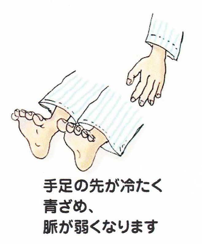 IMG_0001 のコピー 3