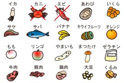 食物アレルギー のコピー